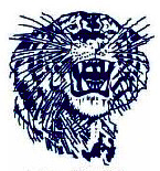 Drawing of a blue tiger head on a white background